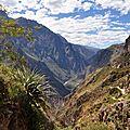 24 Canyon de Colca