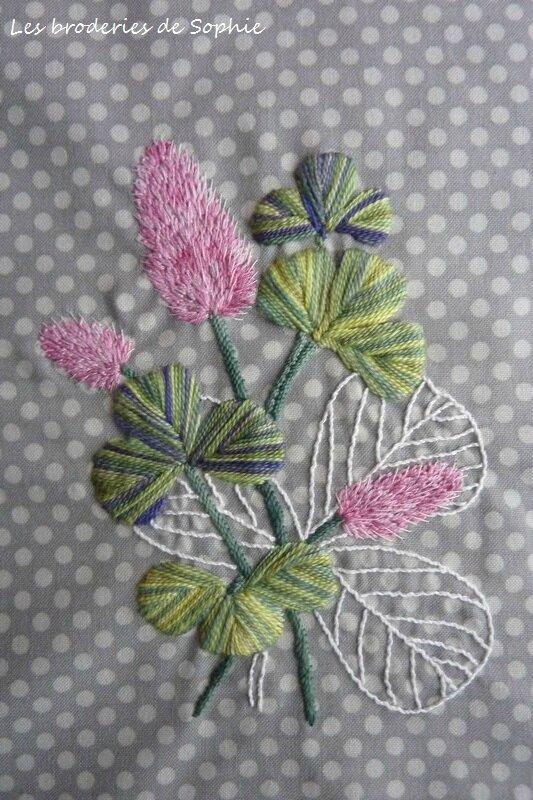 fleurs de trèfle (1)