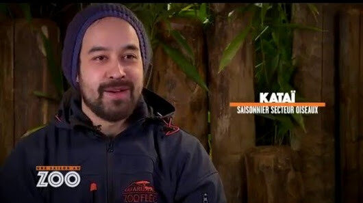 Z unnamed SAISONNIERE KATAI 2
