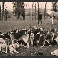 SOLOGNE 1920 Equipage de Cheverny Archives Maul-on 007