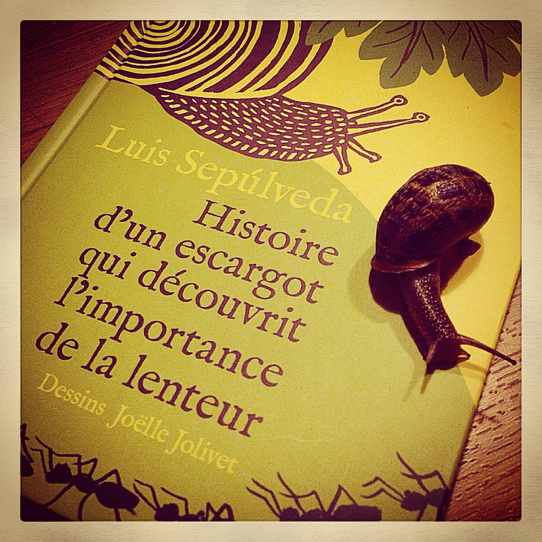 L 39 histoire d 39 un escargot qui d couvrit l 39 importance de la - Dessin d un escargot ...