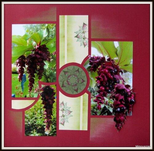 jardin automne 013
