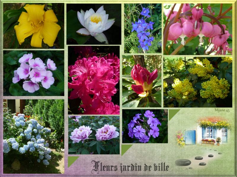 fleurs au jardin de ville