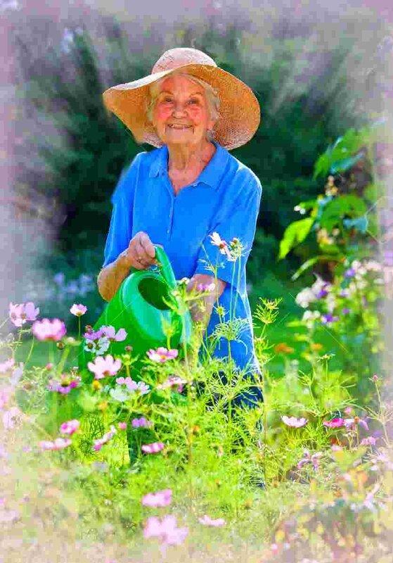 40259651_Sourire_femme_senior_Porter_Brown_Hat_Arrosage_ses_plants_de_fleurs_au_Jardin_tout_en_regardant_la_c_Banque_d_images