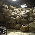 Lavage de laine du bourbonnais