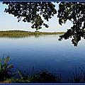 Lac Soustons Pointe des Vergnes 4