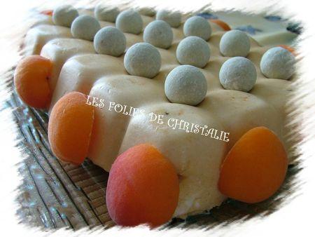 Entremets abricots 9