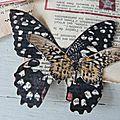 Etiquettes Joyeux Noel Papillons (16)