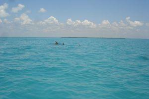 mexique août 2011 585