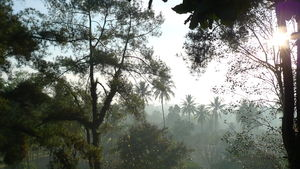 Sulawesi_011