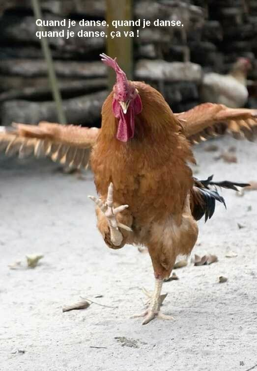 Karate Chick