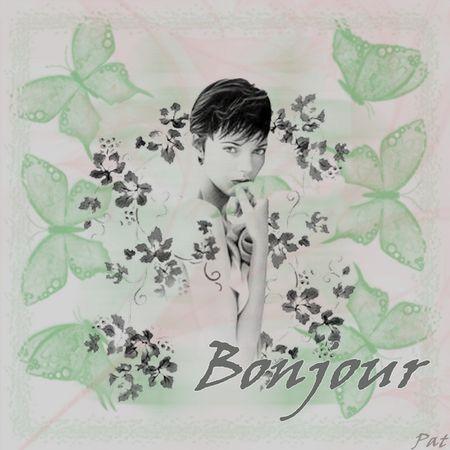 bonjour_papillon1