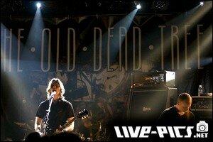 071020_Live_Paris_The_Old_Dead_Tree_39