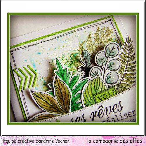 Carte feuilles VOIR SES RÊVES