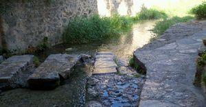saint guilhem08 2011 049