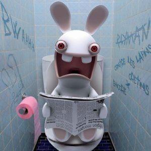 lapin-cretin-toilettes