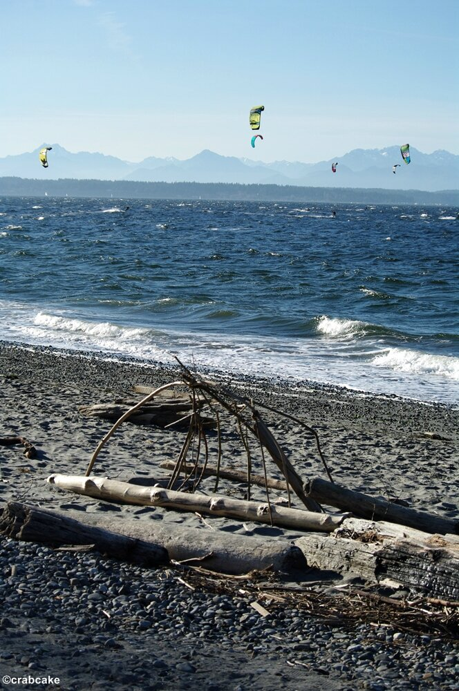 Golden Gardens Beach 2