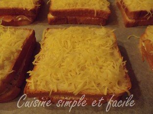 croque monsieur au saumon 03