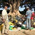 148 - Awassa : Le marché aux poissons