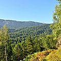 Vue sur Braca de Barlagne et la pointe du Pic d'Arlas...