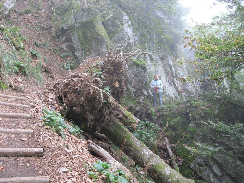 Sentier des roches 002