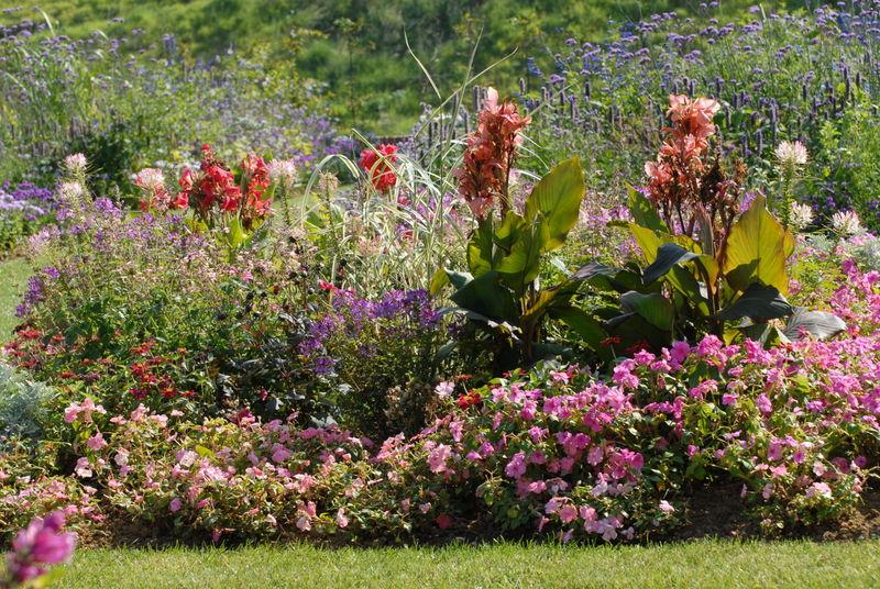 jardins suspendus 0380035