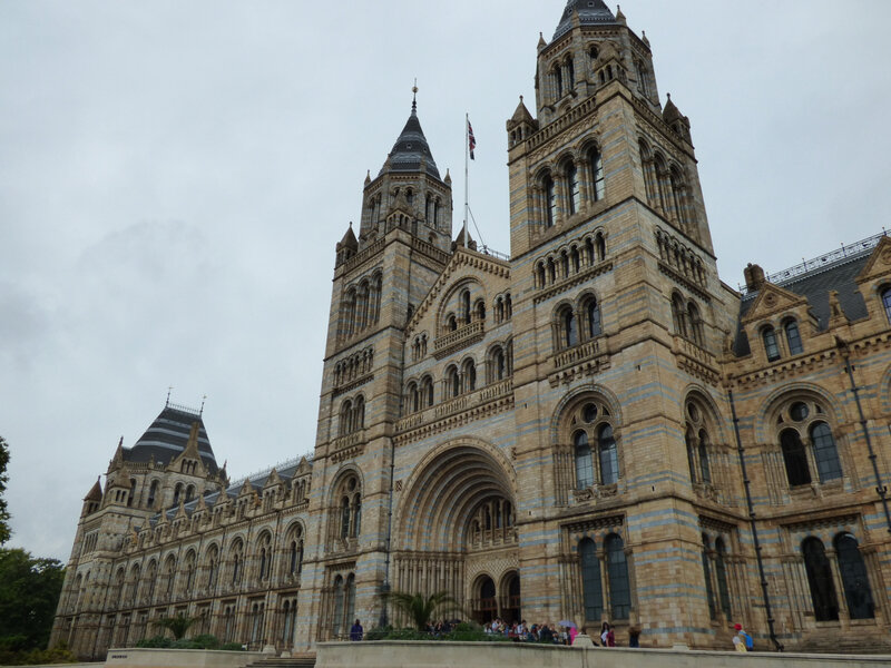 25 Londres Natural History Museum (4)