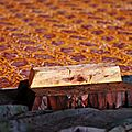 fabrique de Jaipur
