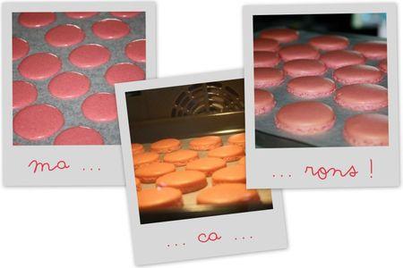 Macarons foie gras chutney4