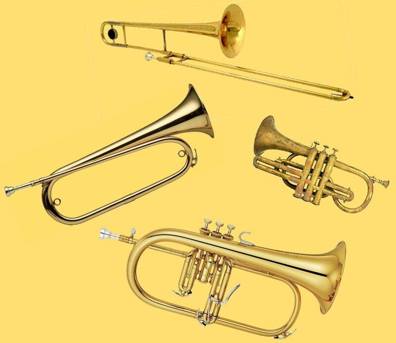 Famille des trompettes