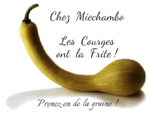 courges5
