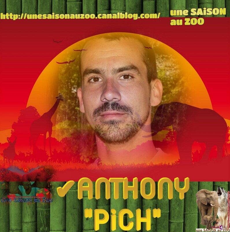 _ 0 MONTAGE BAMBOU PiCH
