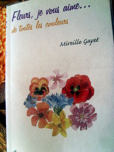 mieille_gayet