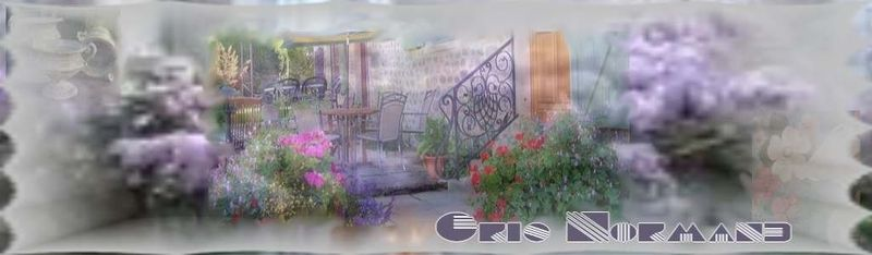gris_normand