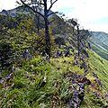 Les crêtes d'Antzola et le Pic d'Erozate...