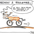 Moutoncyclette…