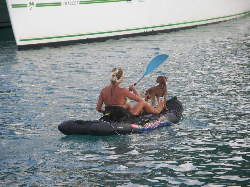 Dame chienchien se balade entre les catamarans...