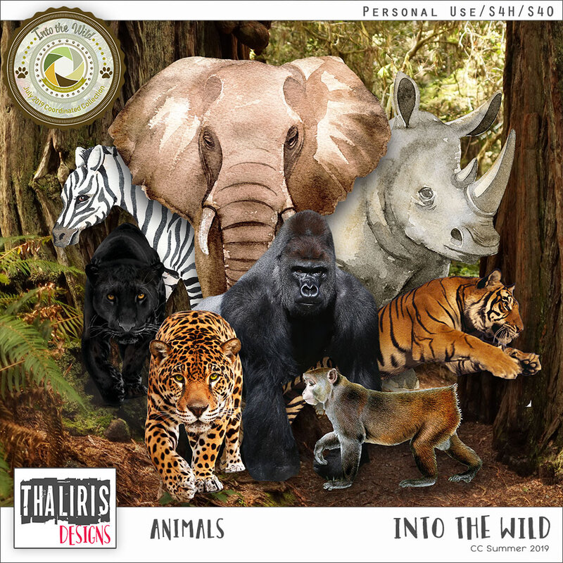 THLD-IntoTheWild-Animals-pv