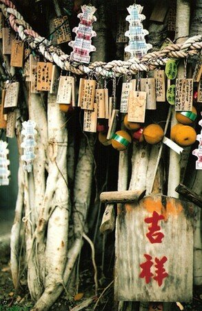 arbre___voeux_chinois_taiwan