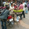 Dans les Old Delhi