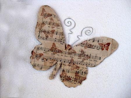 papillons_004