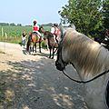 jeu du fer à cheval (26)