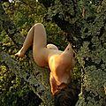 Nue dans l'arbre