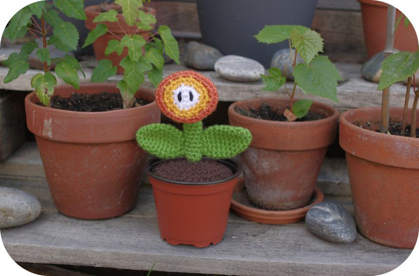 Linda Potts' fireflower (Mario)