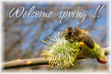 Welcome_spring