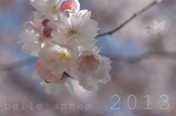 belle_2013
