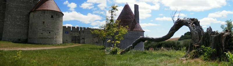 chateau de Fourchaud 6