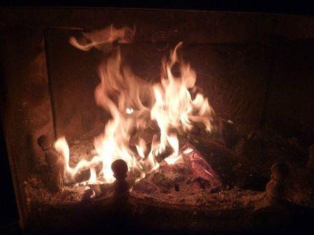1-feu de cheminée (4)