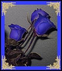 """Résultat de recherche d'images pour """"gif violet fleur"""""""