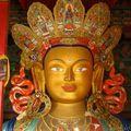 Tikse - Maitreya